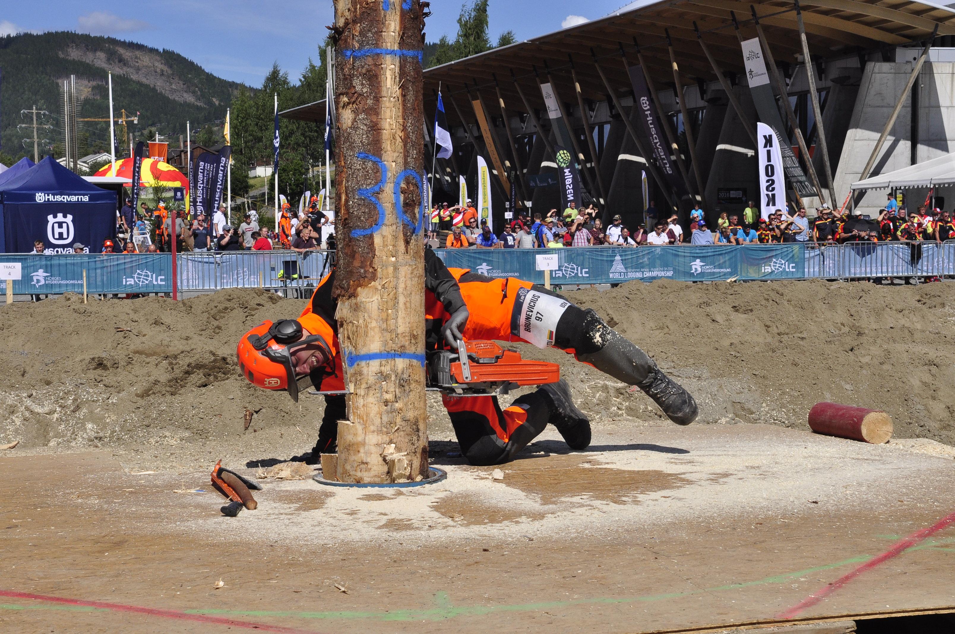 Antanas pjauna medį 1