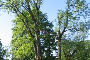 Raganu uosis - 2008 05 29 MJ 005