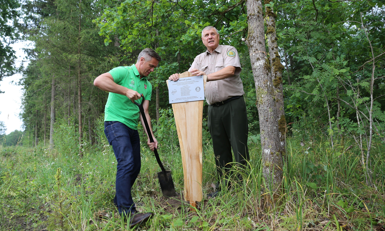 Jonas Mačiulis ir Raimondas Krištaponis sodina Rotary parką Karmėlavos girininkijoje(1)