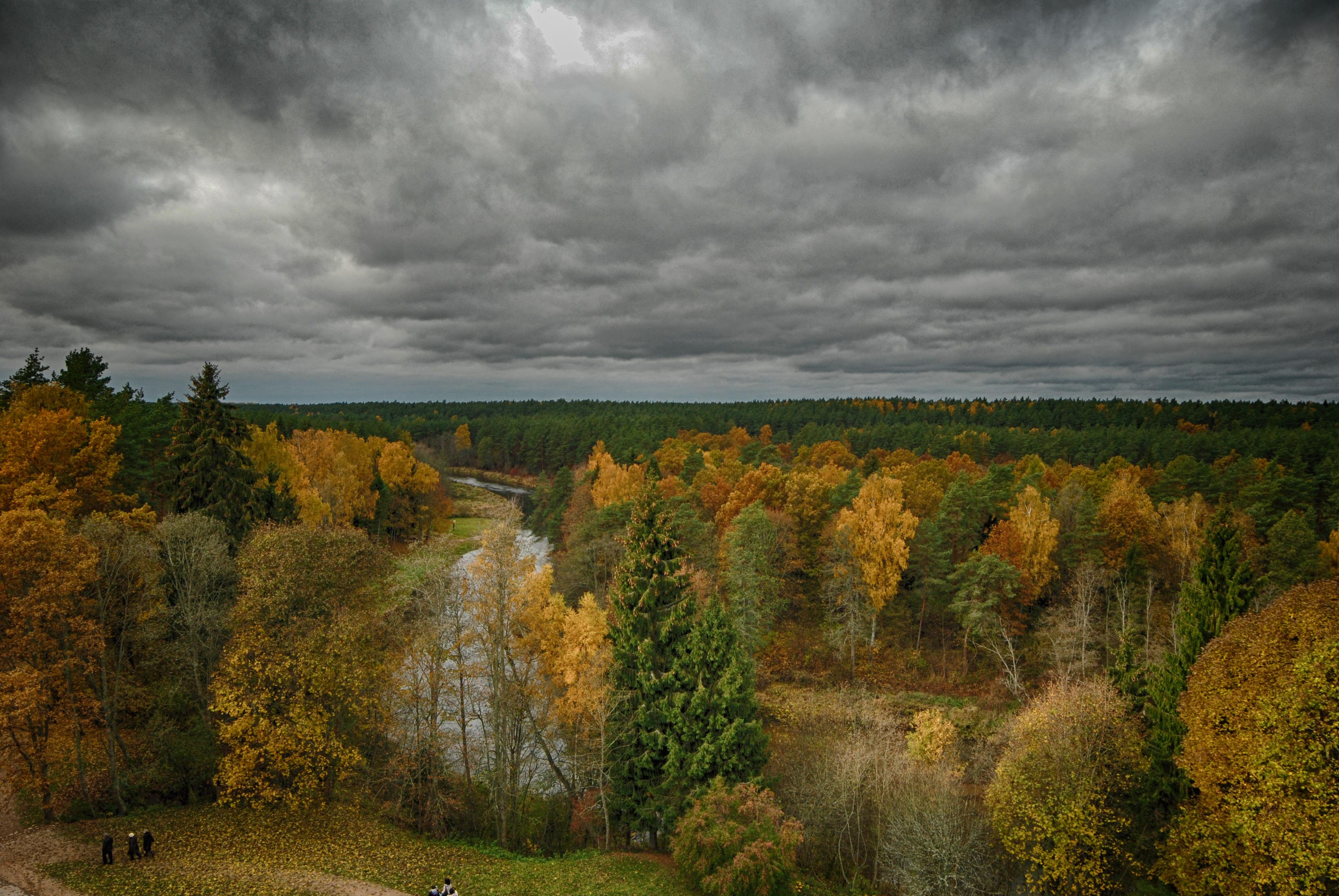 Stakė A. Rudens niūrumas