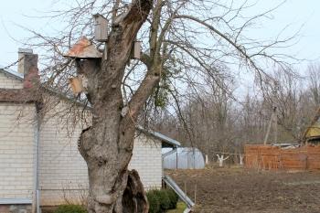 Senoji K obelis
