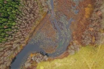 Šventoji upė ties Tiltiškėmis.
