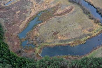 Beveik tundra, Utenos raj.