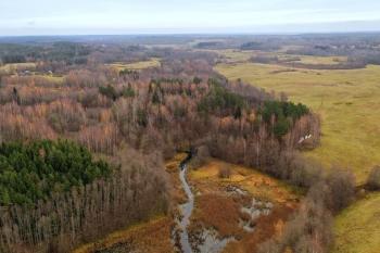 Tiltiškės miškai ir Šventosios upės vaga.