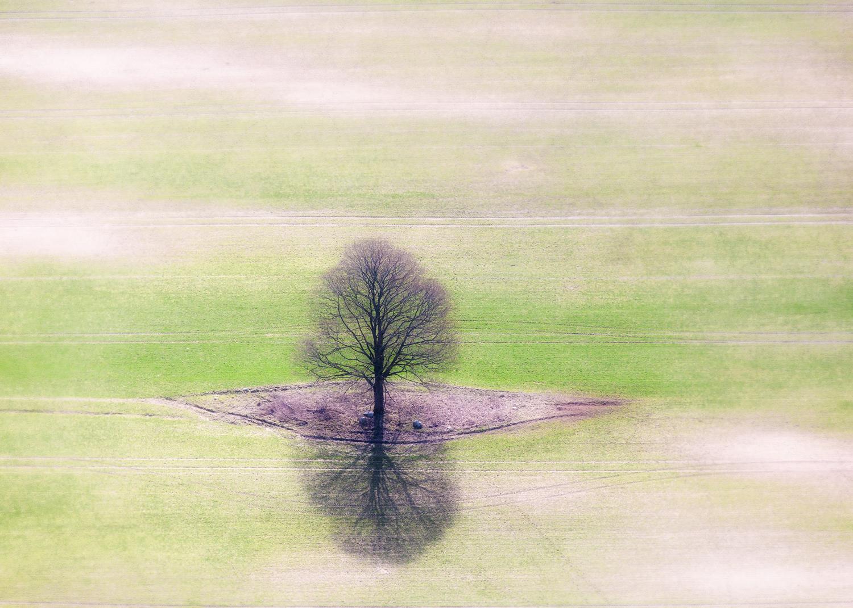 Daugalas R. Vienatvės atspindys