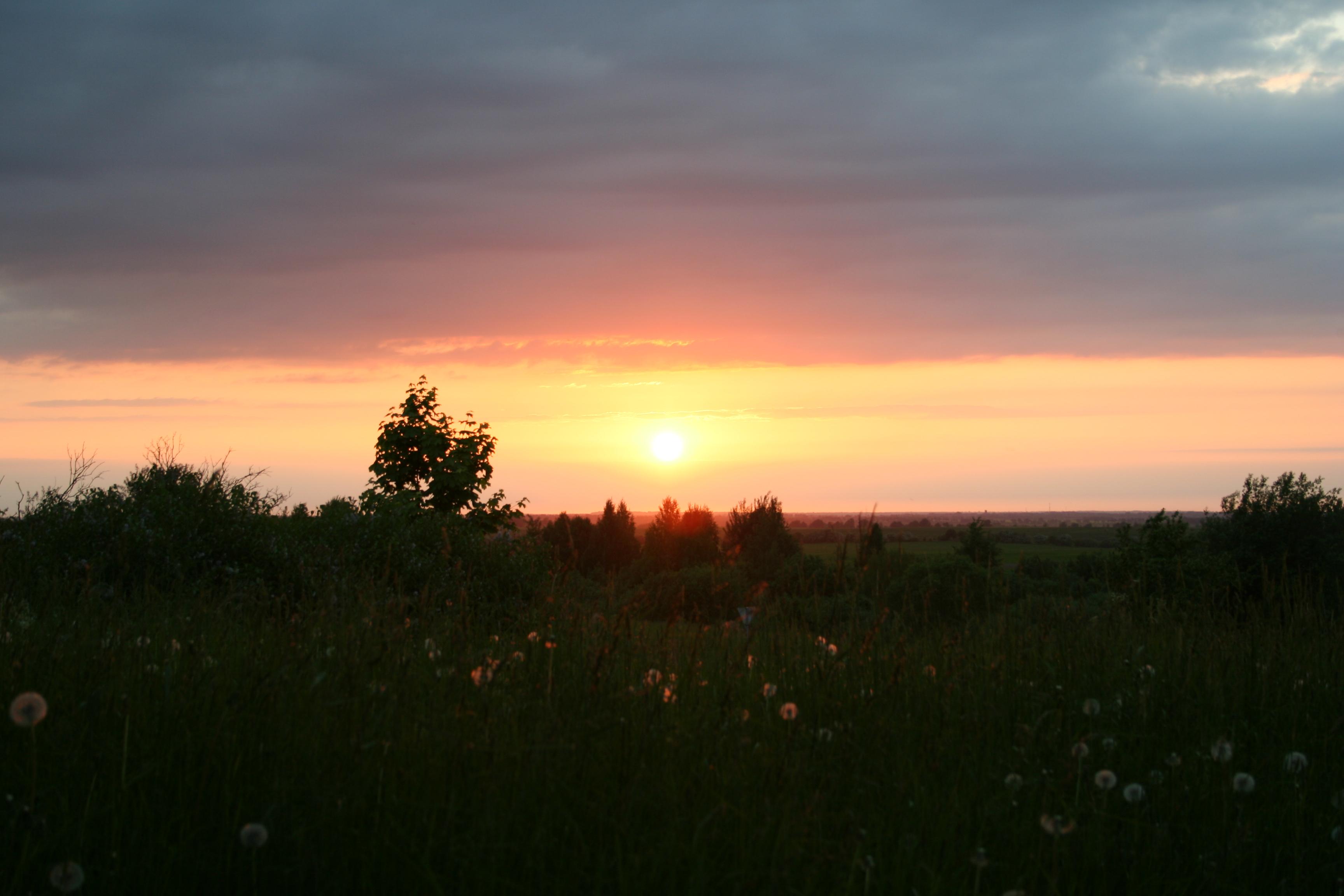 2011 061