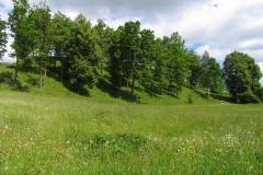 Vilkaviškis Vištyčio Dabravolės piliakalnis