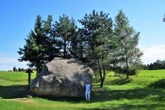 Vilkaviškis Vištyčio akmuo 2