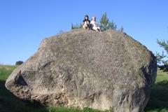 VilkaviŠKIS Vištyčio akmuo geras