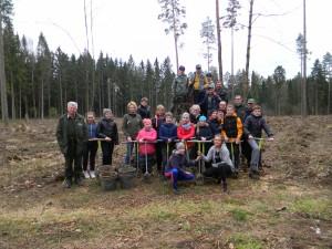 miško sodinimas 2017 080